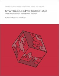 Smart Decline in Post-Carbon Cities
